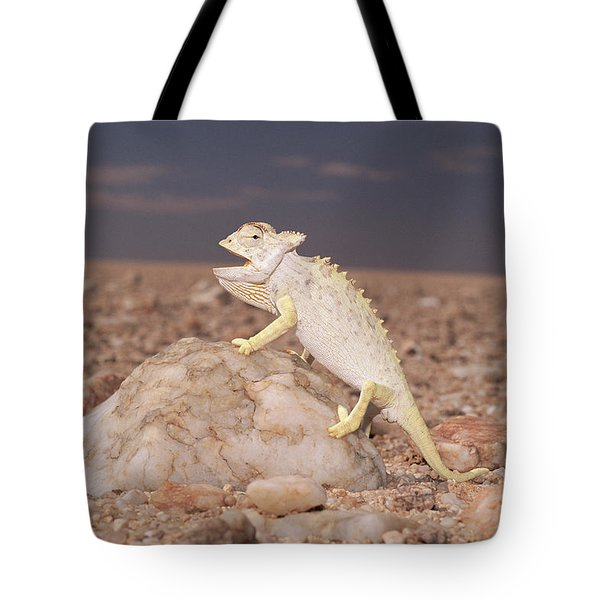Namaqua Chameleon Chamaeleo Namaquensis Tote Bag by Michael & Patricia Fogden