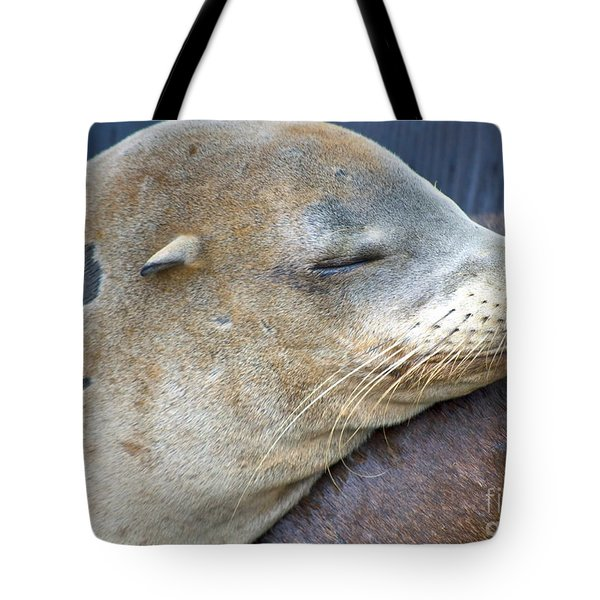 Napping Tote Bag by Gwyn Newcombe