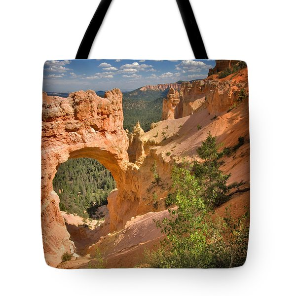 Natural Bridge In Bryce Canyon National Park Tote Bag by Louise Heusinkveld