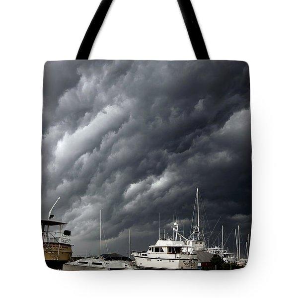 Natures Fury Tote Bag by KAREN WILES