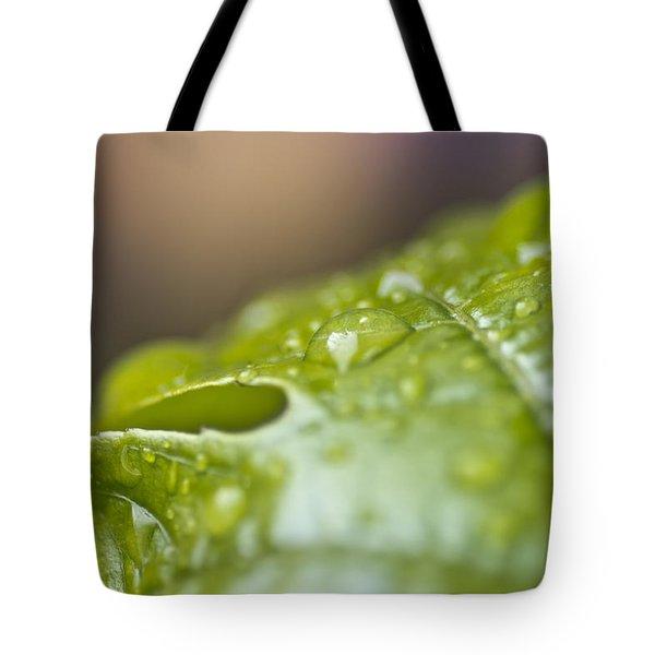 New Beginnings Tote Bag by Priya Ghose