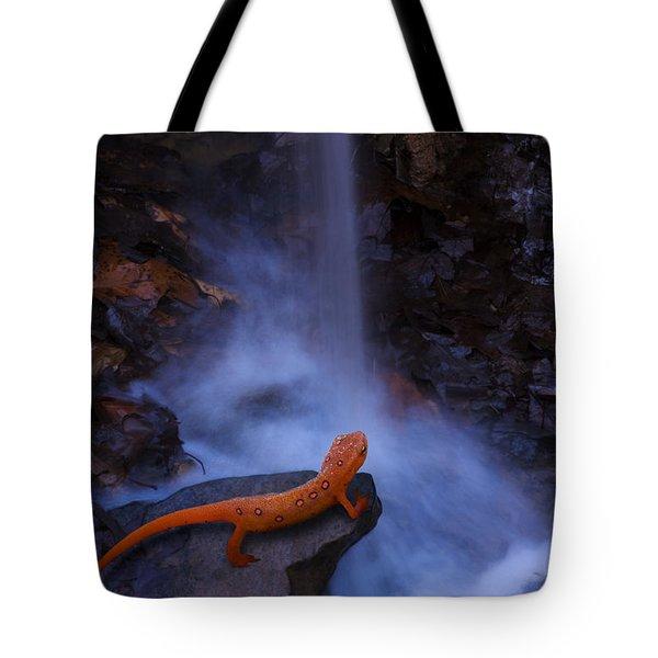 Newt Falls Tote Bag by Ron Jones