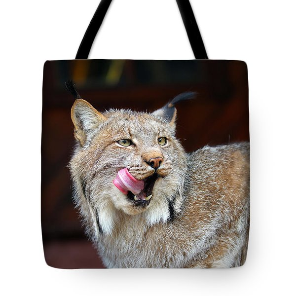 North American Lynx Tote Bag by Paul Fell