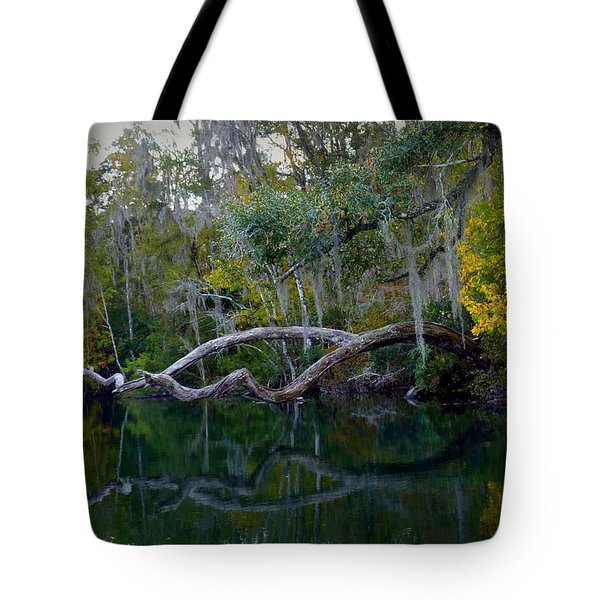 North Florida River Reflections Tote Bag by Carla Parris