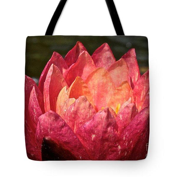 Nymphaea Profile Tote Bag by Susan Herber