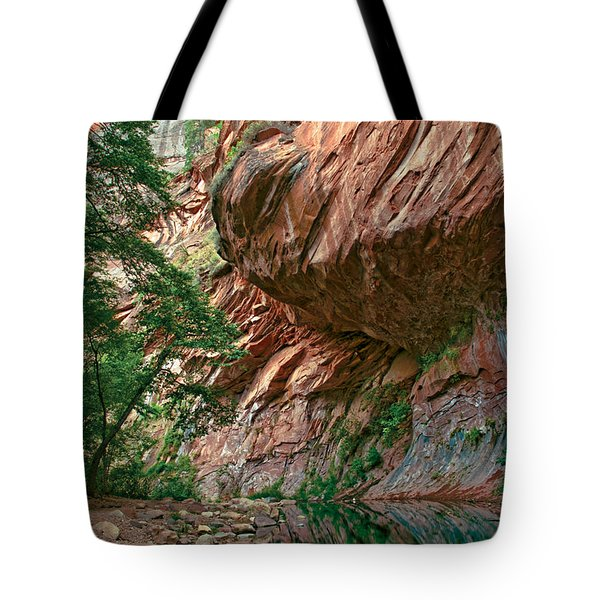 Oak Creek Canyon Walls Tote Bag by Dave Dilli