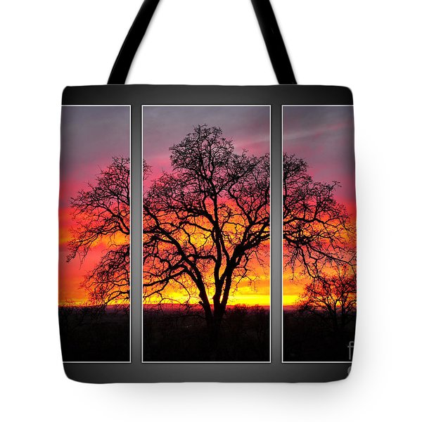 Oak Silhouette Tryptych 1 Tote Bag by Cheryl Young