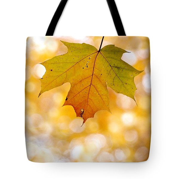 October Maple Leaf Tote Bag by Angie Rea