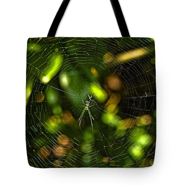 Oh The Web We Weave Tote Bag by Barbara Middleton