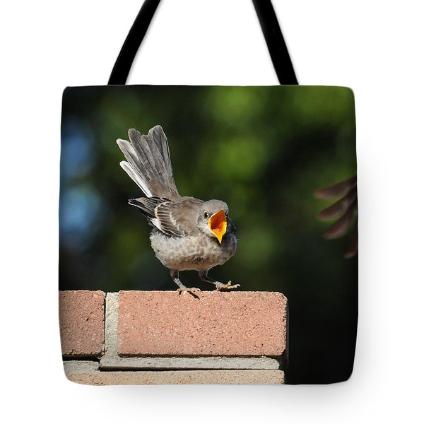 Oh...so Demanding Tote Bag by Lynn Bauer