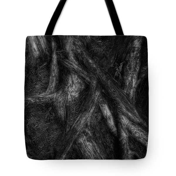 Old Silvery Roots Tote Bag by David Gordon