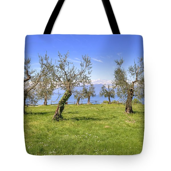 olive grove on Lake Gardan Tote Bag by Joana Kruse