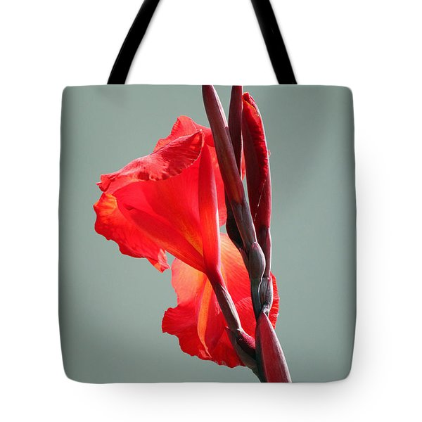 On Fire Tote Bag by Suzanne Gaff
