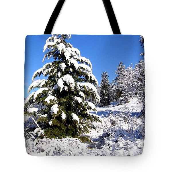 On The Bright Side Tote Bag by Will Borden