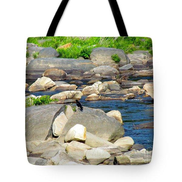 On The Rock Tote Bag by Randi Shenkman