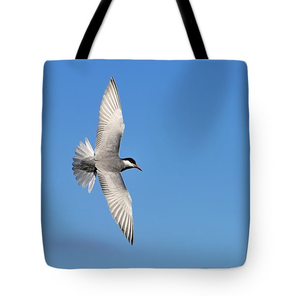 One Good Tern Deserves Another Tote Bag by Tony Beck