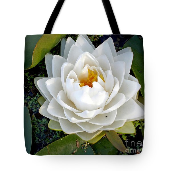 Optical Illusion In A Waterlily Tote Bag by Kaye Menner