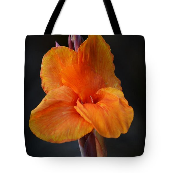 Orange Canna Lily Tote Bag by Melanie Moraga