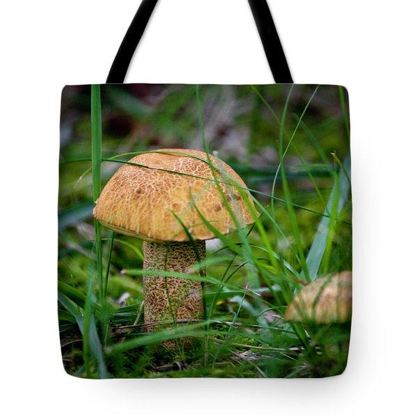 Orange Cap Tote Bag by Teresa Mucha