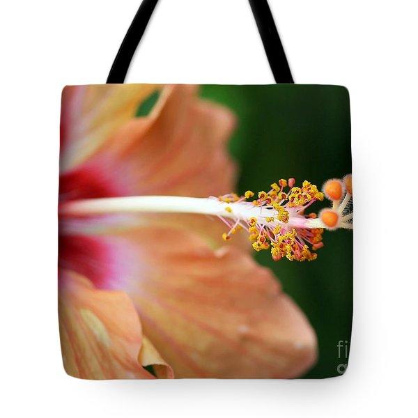 Orange Hibiscus Tote Bag by Sabrina L Ryan