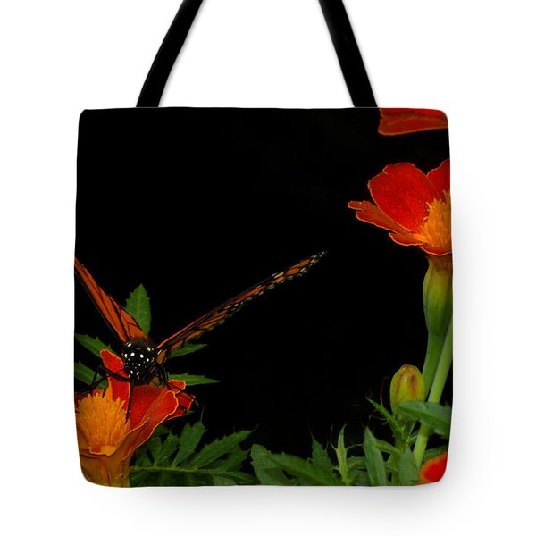Orange On Orange Tote Bag by Lydia Holly