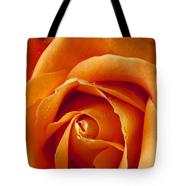 Orange Rose Close Up Tote Bag by Garry Gay