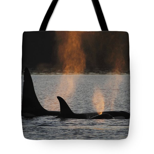 Orca Orcinus Orca Resident Pod Tote Bag by Hiroya Minakuchi