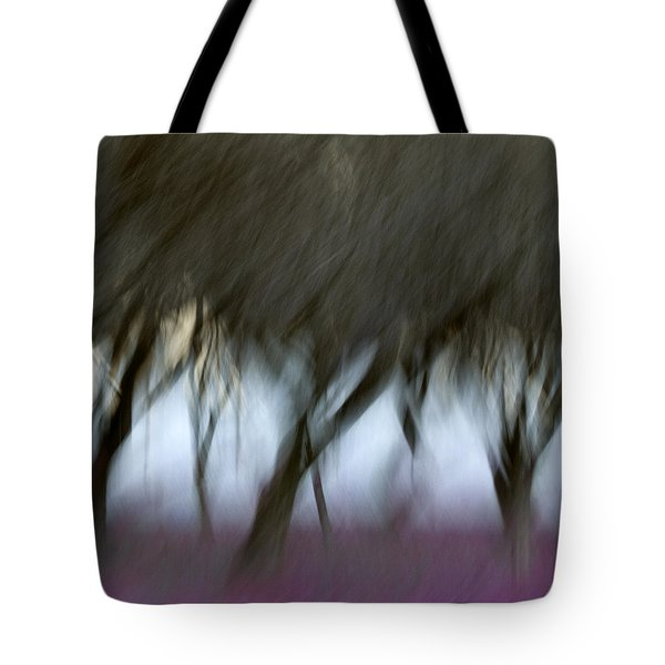 Orchard in Springtime Tote Bag by Carol Leigh