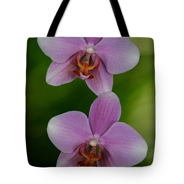 Orchid Delight Tote Bag by Adele Moscaritolo
