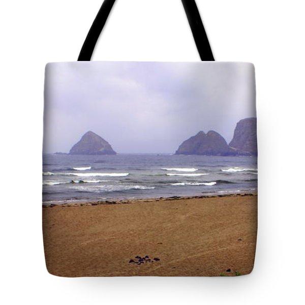 Oregon Coast 1 Tote Bag by Marty Koch