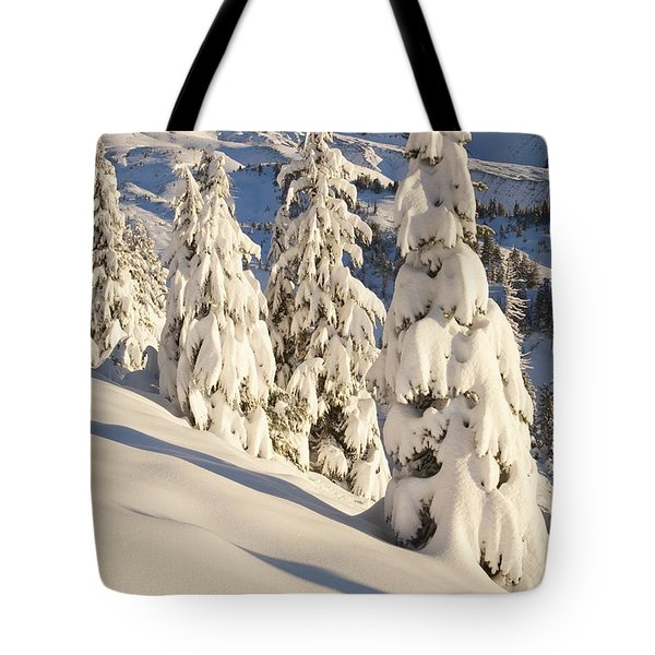 Oregon, United States Of America Snow Tote Bag by Craig Tuttle