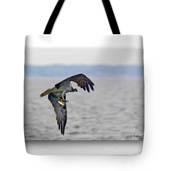Osprey Grab Tote Bag by Brian Wallace