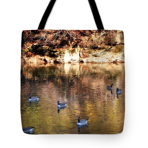 Out for a Swim Tote Bag by Bill Cannon