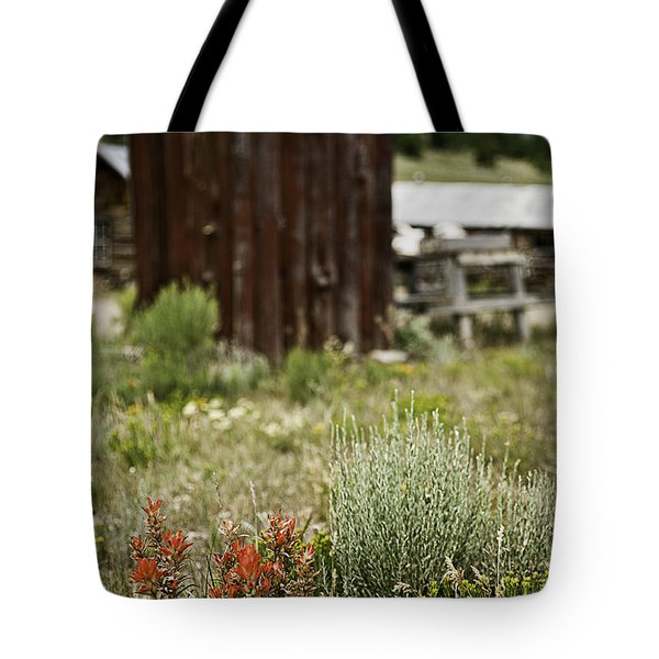 Outhouse Path Tote Bag by Melany Sarafis