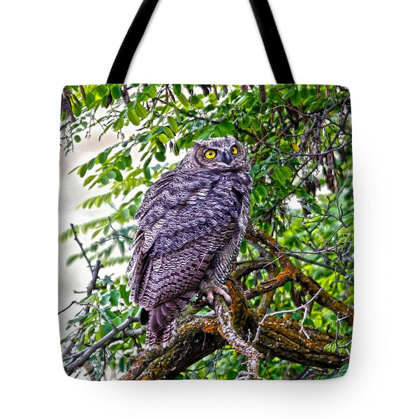 Owl In A Tree Tote Bag by Athena Mckinzie