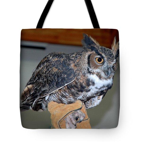 Owl together now Tote Bag by LeeAnn McLaneGoetz McLaneGoetzStudioLLCcom