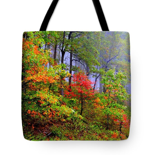 Painted Autumn Tote Bag by Carolyn Wright