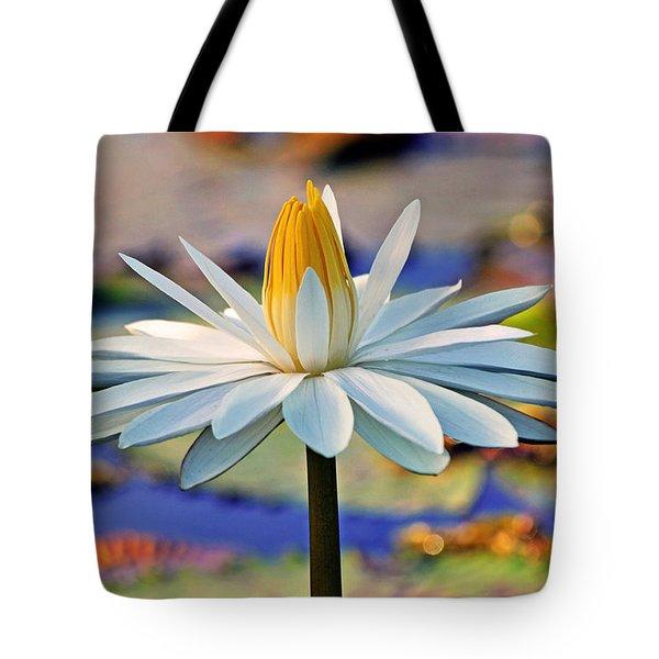 Painted By The Sun Tote Bag by Melanie Moraga