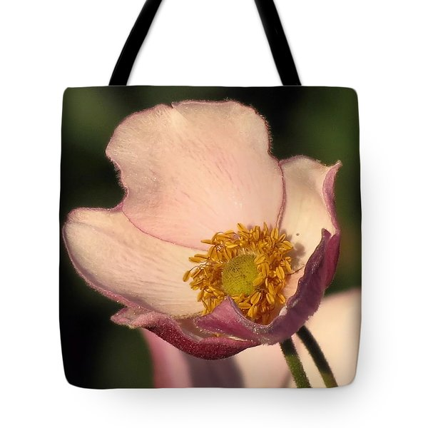 Pale Tote Bag by Janice Drew