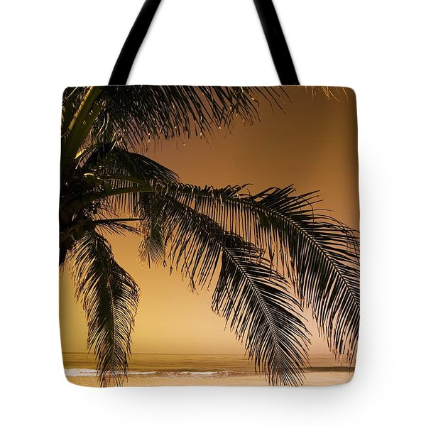 Palm Tree And Sunset In Mexico Tote Bag by Darren Greenwood