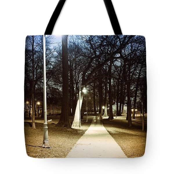 Park Path At Night Tote Bag by Elena Elisseeva