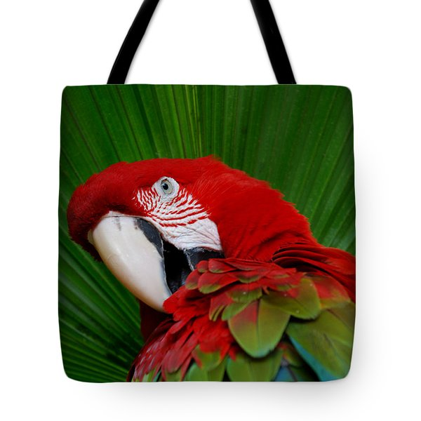 Parrot Head Tote Bag by Skip Willits