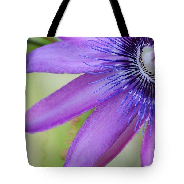 Passiflora Caerulea Tote Bag by Melanie Moraga
