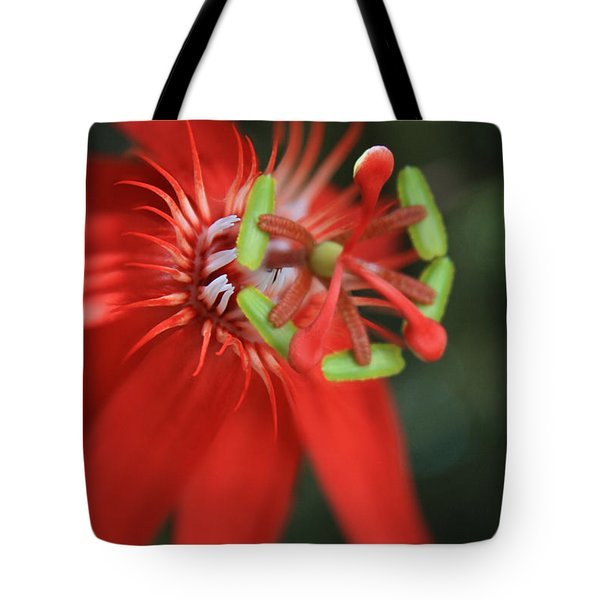 Passiflora vitifolia Scarlet Red Passion Flower Tote Bag by Sharon Mau