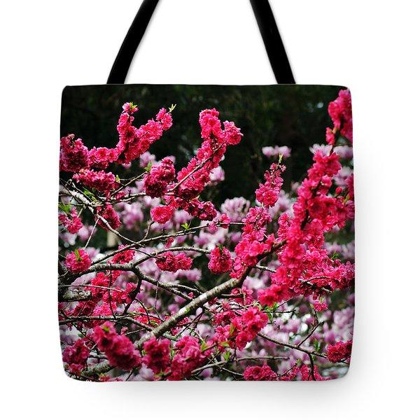 Peach Blossom Tote Bag by Kaye Menner