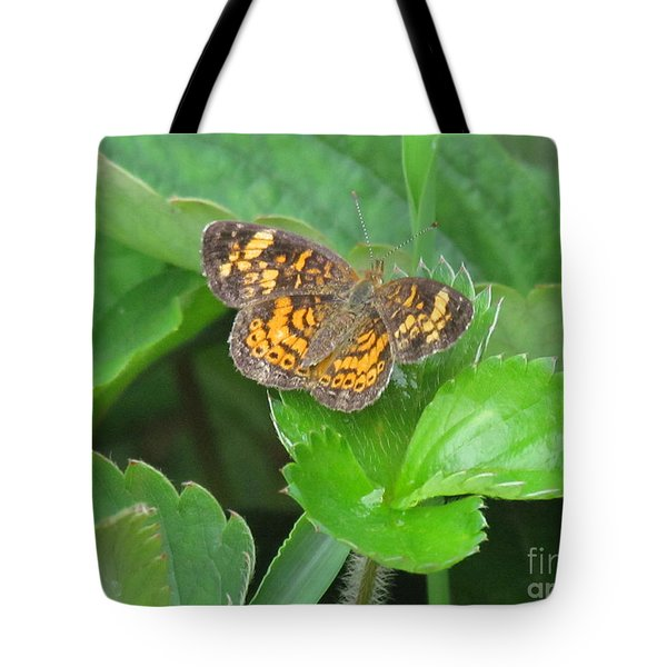 Pearl Crescent Butterfly Tote Bag by Randi Shenkman