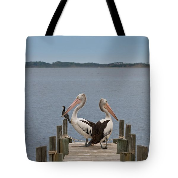 Pelicans On A Timber Landing Pier Mooring Tote Bag by Ulrich Schade