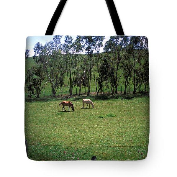 Petaluma Pasture Tote Bag by Kathy Yates