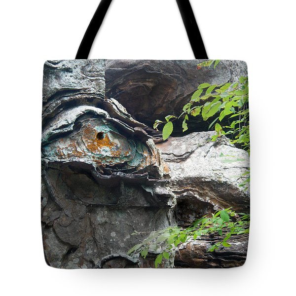 Petrified Prehistoric Monster In Arkansas Tote Bag by Douglas Barnett
