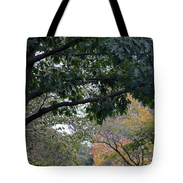Petrifying Springs Golf Course Tote Bag by Kay Novy